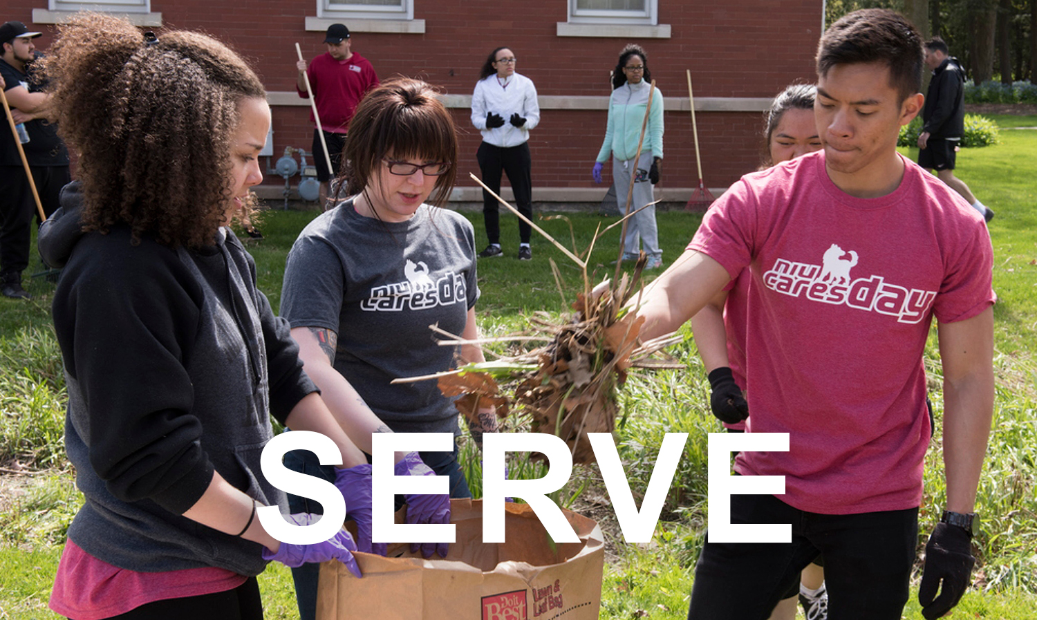 volunteer-nexus---serve